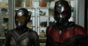 antman-a-wasp